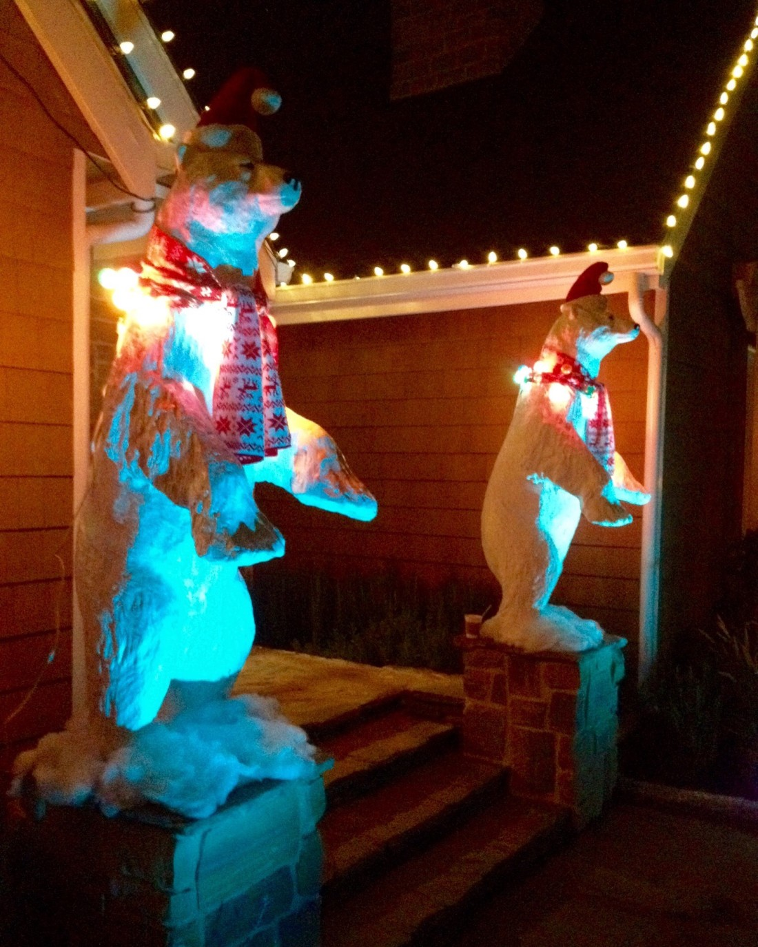 Christmas lit polar bears
